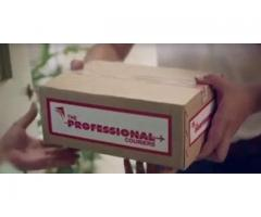 The Professional Couriers PVT LTD